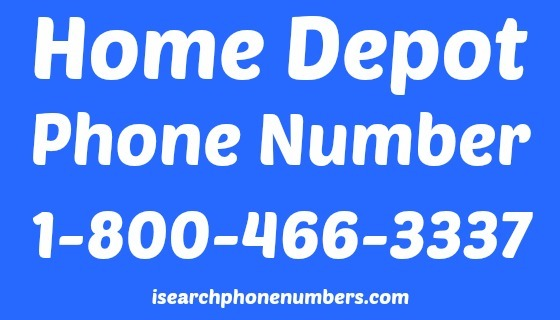 how to find company phone number